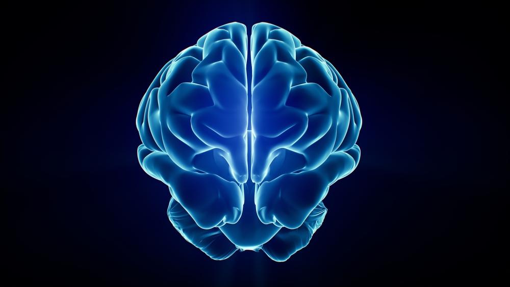 Neuroscience leadership training
